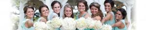 brideslidejan2015